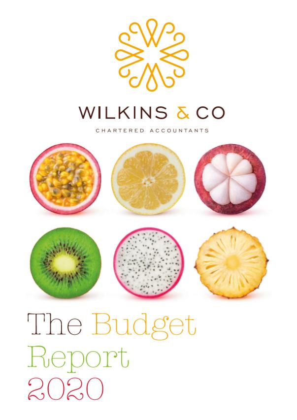 Budget 2020 cover