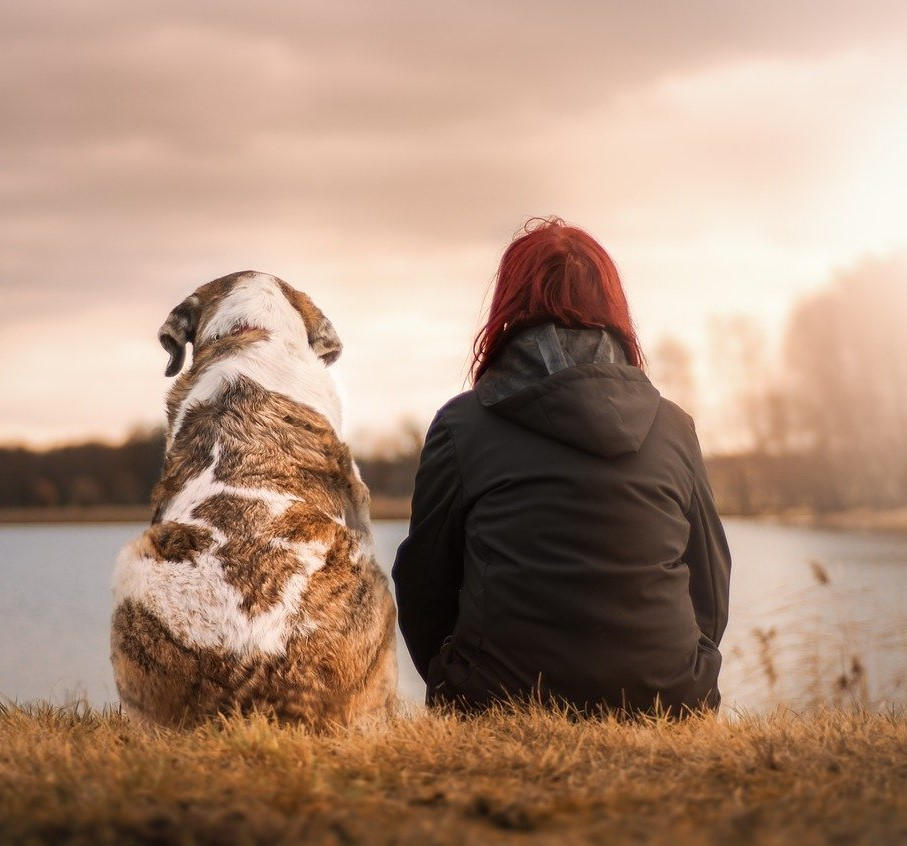 dog and adult by lake